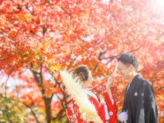 399853_福岡_秋&冬