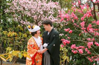 174814_東京_花(桜、梅等)