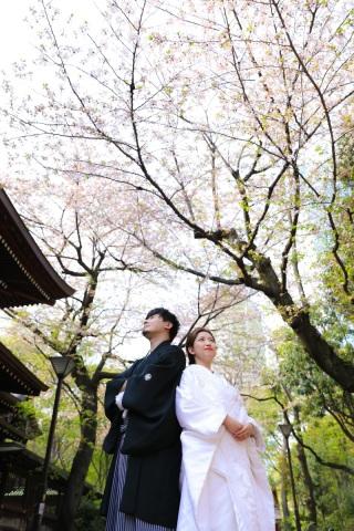 173592_東京_花(桜、梅等)