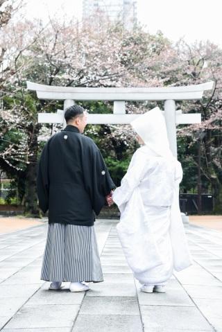 173589_東京_花(桜、梅等)