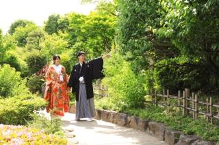 174832_東京_花(桜、梅等)