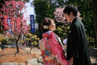 174821_東京_花(桜、梅等)