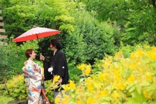 174815_東京_花(桜、梅等)
