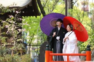 173591_東京_花(桜、梅等)