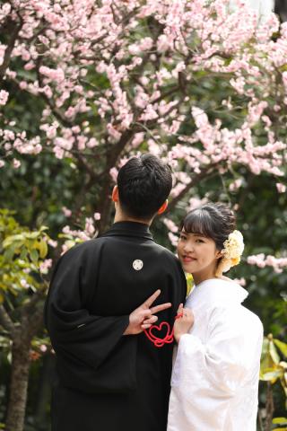 174826_東京_花(桜、梅等)