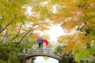 256326_東京_秋のお写真(紅葉シーズン)