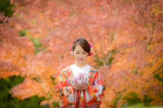 256327_東京_秋のお写真(紅葉シーズン)