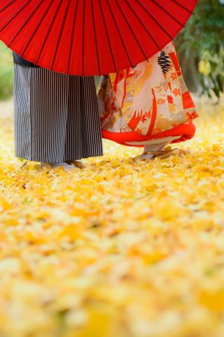 171713_東京_秋のお写真(紅葉シーズン)