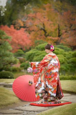 256321_東京_秋のお写真(紅葉シーズン)