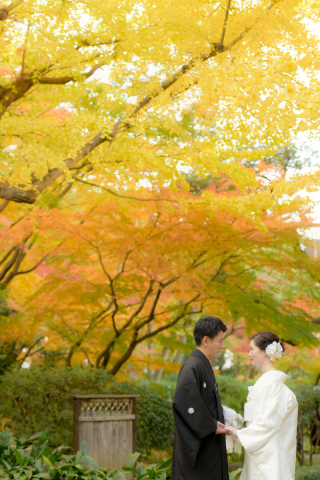 256324_東京_秋のお写真(紅葉シーズン)