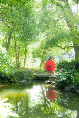 173598_東京_夏のお写真(5月~9月)