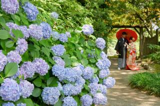 173615_東京_夏のお写真(5月~9月)