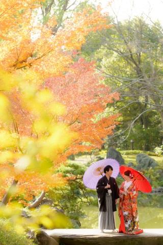 256320_東京_秋のお写真(紅葉シーズン)