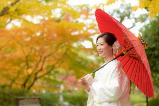 256322_東京_秋のお写真(紅葉シーズン)