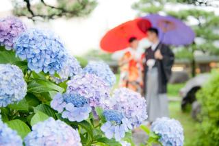 261581_東京_雨の日