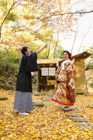 142226_神奈川_紅葉に染まる三渓園