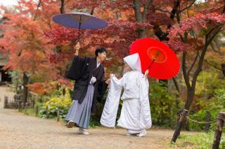 170469_神奈川_紅葉に染まる三渓園