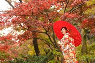 189209_神奈川_紅葉に染まる三渓園