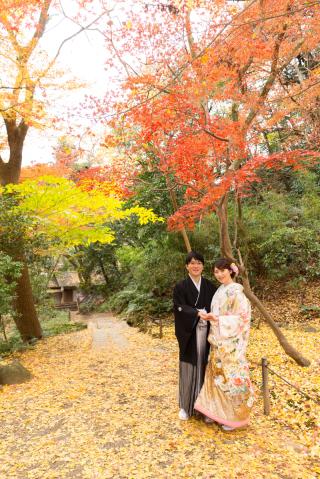 142181_神奈川_紅葉に染まる三渓園