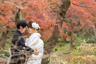189212_神奈川_紅葉に染まる三渓園