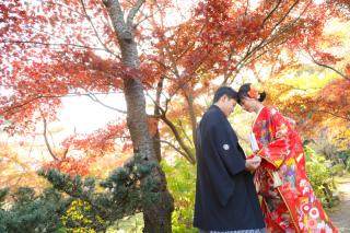 170467_神奈川_紅葉に染まる三渓園