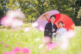 302952_東京_昭和記念公園 季節ごとの花