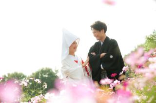 294651_東京_昭和記念公園 季節ごとの花
