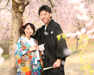 24023_新潟_ロケーション・桜