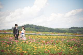 236950_北海道_ロケーションフォト【富良野】