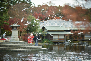 156039_愛知_ロケーションフォト【秋・冬】2