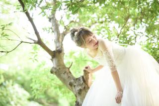 155825_愛知_ロケーションフォト【春・夏】1