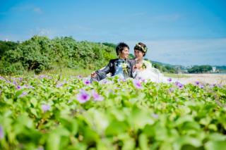 146772_沖縄_Botanical Style