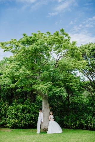 146752_沖縄_Botanical Style