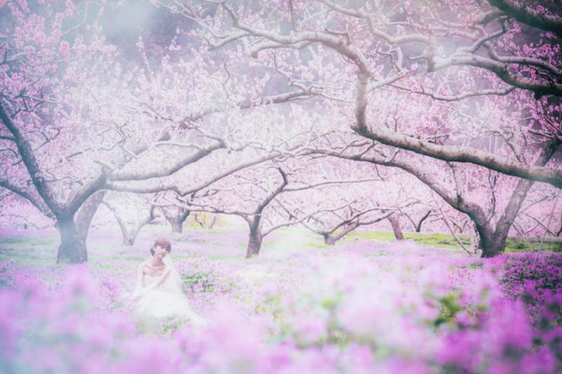 MK Wedding Photography【produce by funwedding】_トップ画像1
