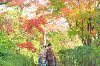 383809_東京_【2021年】紅葉ロケーション