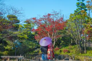 383811_東京_【2021年】紅葉ロケーション