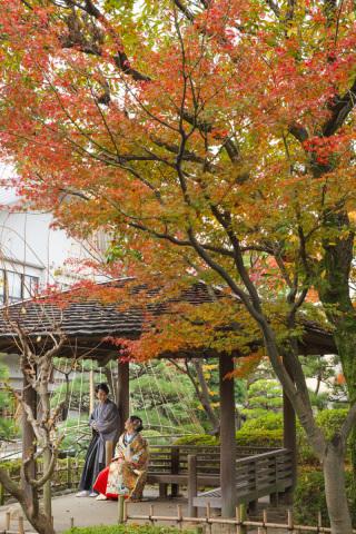 284517_東京_【2020年】紅葉おすすめ