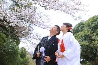 313168_埼玉_【2021年】桜ロケーションイメージ