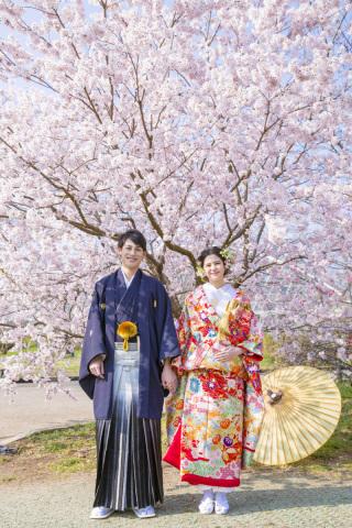 313190_京都_【2021年】桜ロケーションイメージ