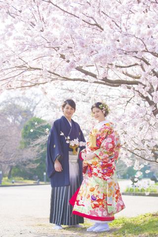 313193_京都_【2021年】桜ロケーションイメージ