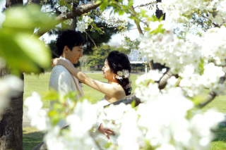 313184_東京_【2021年】桜ロケーションイメージ