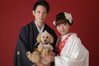 176432_奈良_Pet photo
