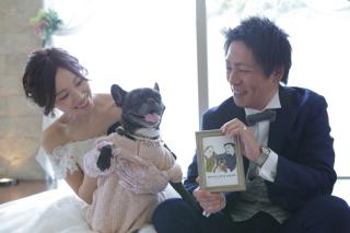 263735_奈良_Pet photo