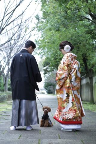 203241_奈良_Pet photo