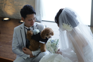 203257_奈良_Pet photo