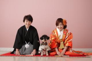 48900_奈良_Pet photo