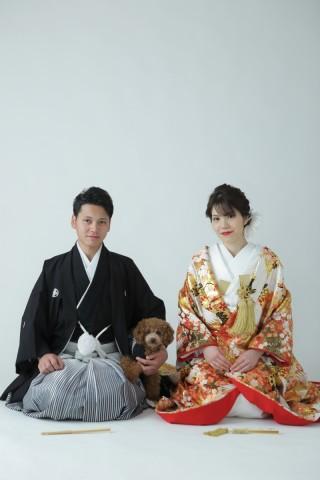 203243_奈良_Pet photo