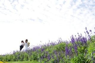 78143_奈良_馬見丘陵公園 洋装ロケーション