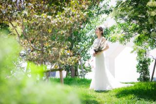 191225_兵庫_洋装Wedding photos 1