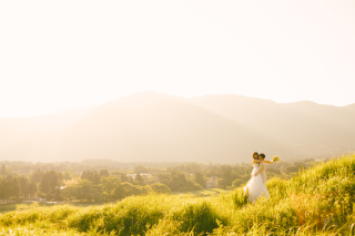 190052_神奈川_ドレス/和装ロケーション